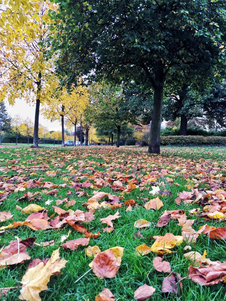 East Park during Autumn