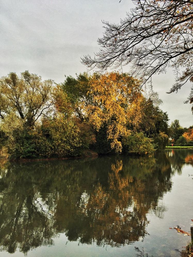 Beautiful Autumn Parks